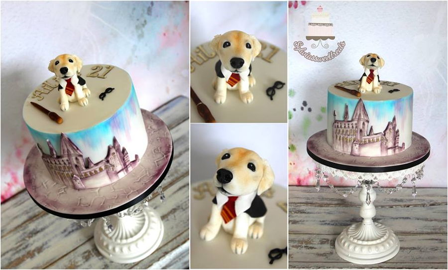 Harry Potter And Laby Pup on Cake Central