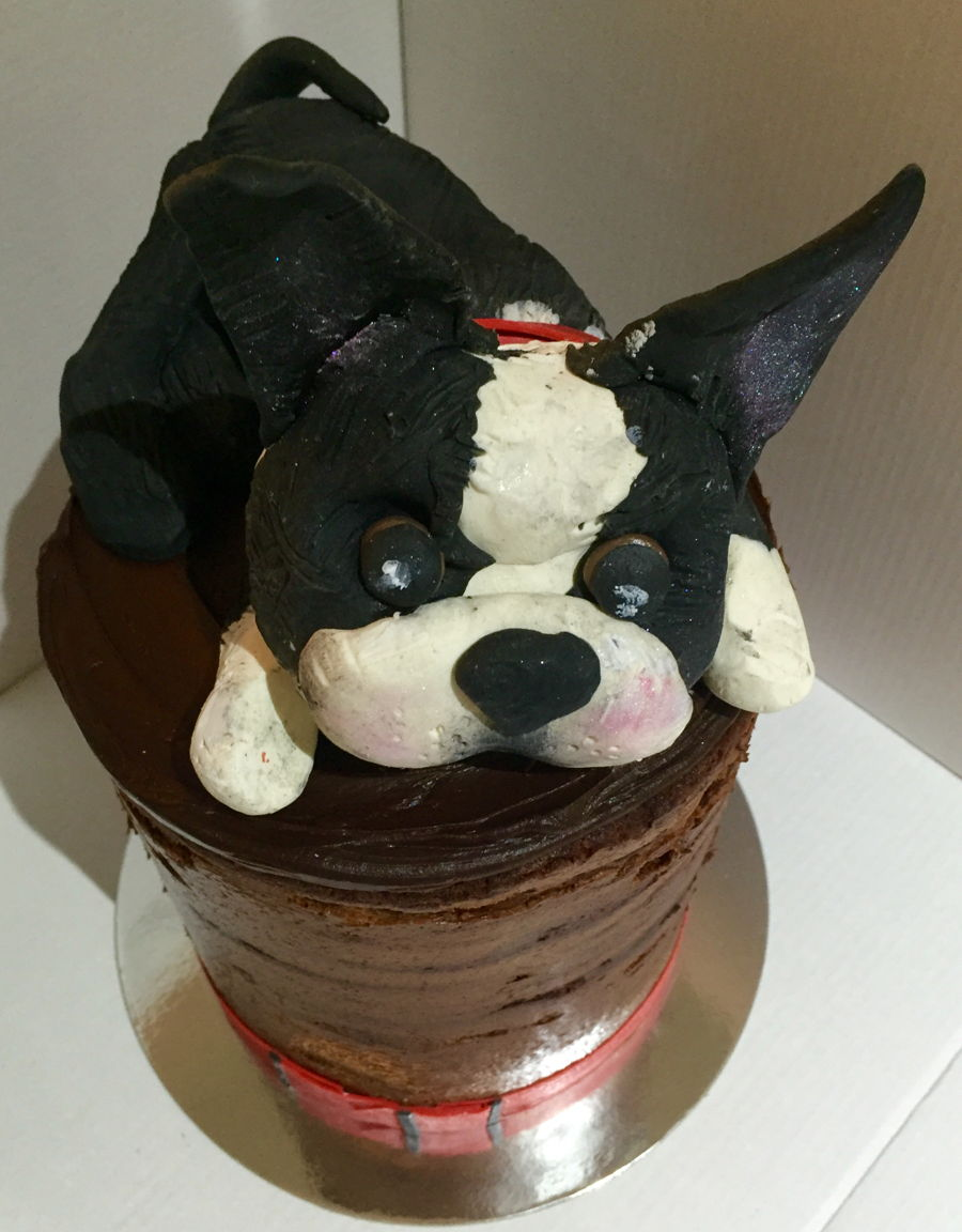 Naked Chocolate With Chocolate Pug on Cake Central