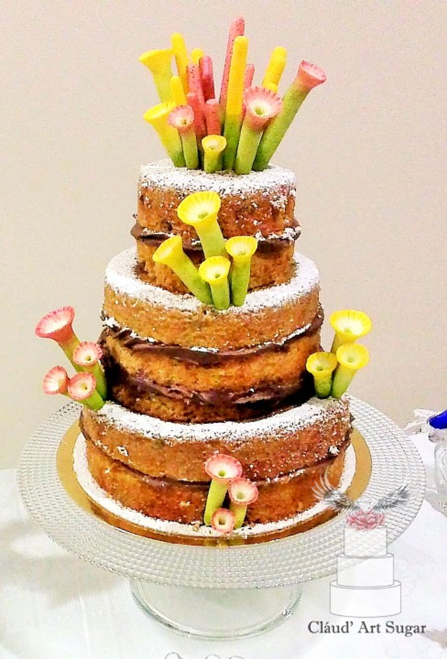 Unusual Naked Cake on Cake Central