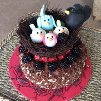 Bird Cake Birds in a nest