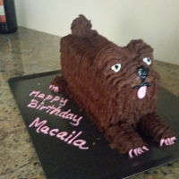Dog Shaped Birthday Cake   One of my granddaughters loves animals. She was so excited with this cake.
