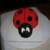Lady Bug Lady bug sheet cake and matching smash cake