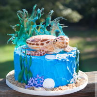 "Sea Turtle Cake I have really enjoyed making this sweet sea turtle, He is made of rice krispy treats, ganache and fondant. The ""water"" behind him..."
