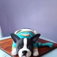 3D Dog Cake 3D grooms cake Boston Terrier by Liz Huber Cakery Creation