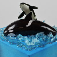 Orcas In Puget Sound Charity cake for Baby Orcas Birthday Bash, held on June 5 in Seattle, Wa. Four-tier cake, inspired by a design of Planet Cakes.