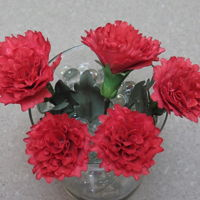 Red Carnations Mbalaska 10-4-2016 sugar flowers