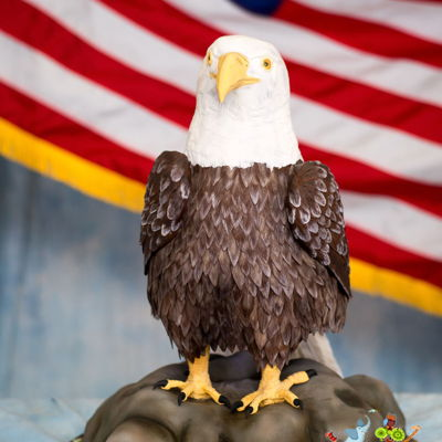 "American Bald Eagle ""world Animal Day 2016"""