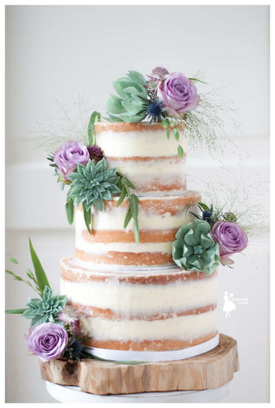 Naked Cake With Sugar Succulents Cakecentral Com