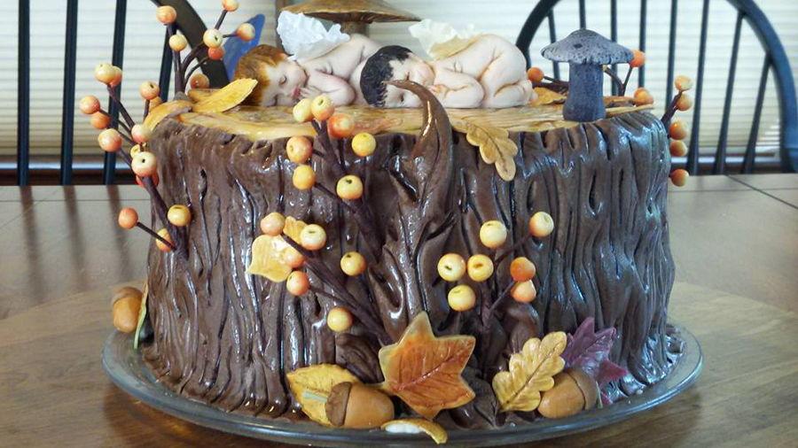 Woodland Fairy Babies Cakecentral Com