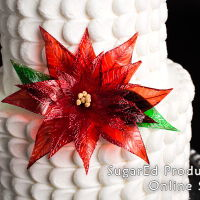 Christmas Cake!   It's that time of the year again! Check out this classic cake accented with a gelatin poinsetta.