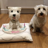 Westie Dog Cake Carved westie cake