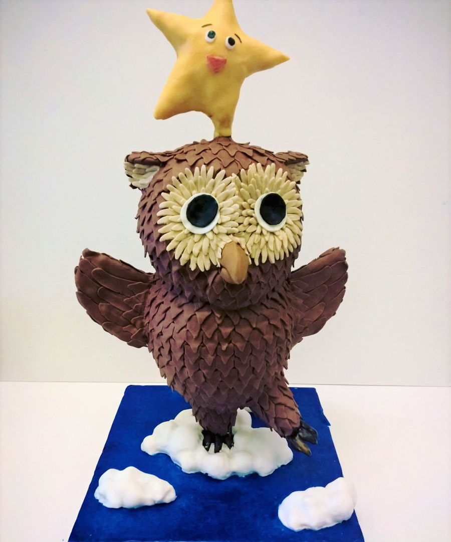 3D 'twinkle Star And Owl' Cake on Cake Central