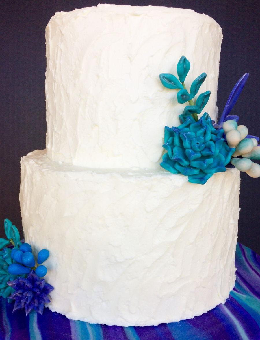 Rustic Succulent Wedding Cake Cakecentral Com