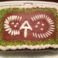 Appalachian Trail Got the idea from other cake on this site. Made the cake for my niece who recently completed the whole trail. Thias was done for the half...