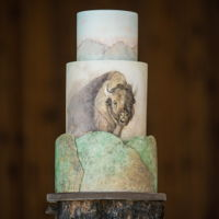Bison Shoot Layered fondant and hand painted for a shoot out on a bison ranch