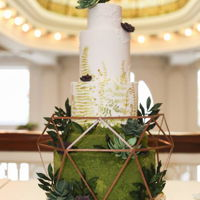 Terrarium 6 tiers of succulent and mossy goodness!Fondant Birch base, hand painted ferns and a hand made terrarium! <3