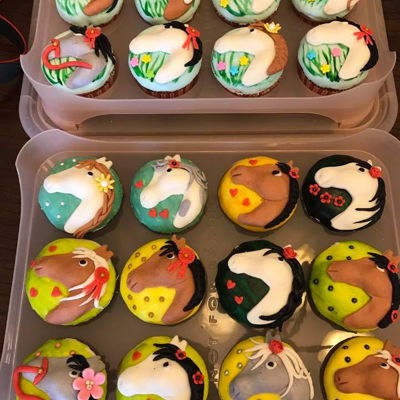 Horse Cupcakes   Made these for a horse themed 12th birthday party