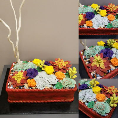 Succulant Cake  Succulent cake covered in red fondant and dusted with brown and gold Luster Dust. The top is a mix of fondant and gumpaste. I also added...