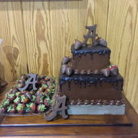 Alabama Crimson Tide Grooms Cake This is a devil's food cake with milk chocolate fudge icing with a dark chocolate ganache drip. It is decorated with a solid chocolate...