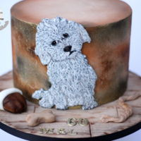 Bichon Frise Another hand painted on fondant image of a bichon frise i did 2day. To paint this lovely dog i use my new decorative paints from EdibleArt...