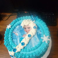 Birthday Cake Vanilla and chocolate cake. Frozen theme