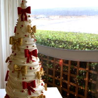 Christmas Wedding Cake This was my last cake of 2016 it was a challenge, however I loved making something a little different. It is a 6 tier cake with a cone on...