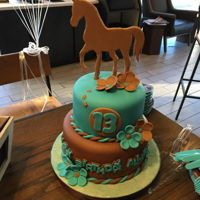 Little Horse Cake Small chocolate cake with mocha filling. For a birthday party at Starbucks