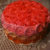 Ombre Rosette Cake Ombre Rosette Cake. BC Icing.