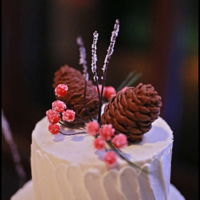 Rustic And Simply Elegant Winter Cake Wedding cake inspired by nature and the Christmas Season. The pine cones are sculpted of chocolate fondant. Gumpaste berries iced in sugar...