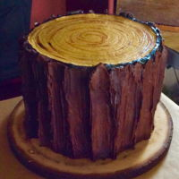 Slab Of Wood Cake Buttercream frosting with chocolate tree bark.