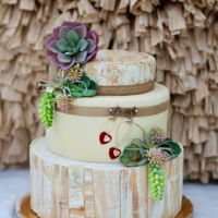 Succulent Love This Cake was created for a Bridal Expo as a show piece. I really love the crackle effect on the cake and the succulents really pull it all...