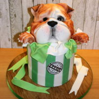 Ted The Bulldog Ted is made out of RKT. The gift box is chocolate mud cake