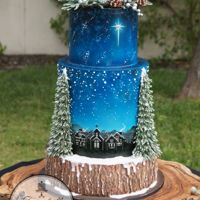 Winter Wonderland Loved creating this Christmas cake for the November issue of Cake Masters Magazine 2016. A full tutorial with coloured photos and step by...