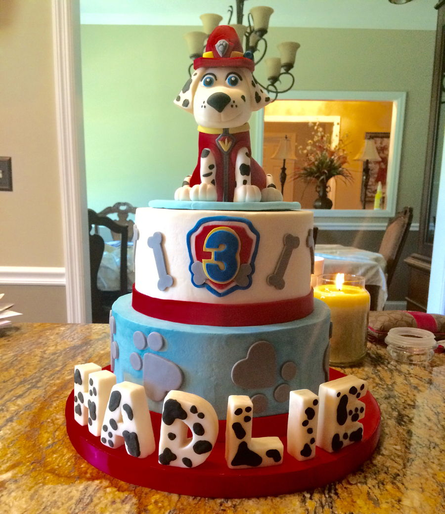 Paw Patrol Quot Marshall Quot Cake Cakecentral Com