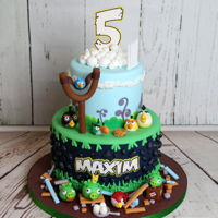 Angry Birds Cake Angry Birds themed birthday cake. My talented 16th yo daughter made almost all of the decorations. Julia's Exclusive Cakes https://www...