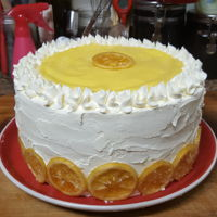 Candied Lemon Cake Swiss buttercream Lemon Cake with Candied lemon slices.