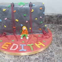 Climbing Wall Cake A quick cake for my 8 year old!