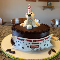 Puppy With A Little Problem 12inch double layer chocolate cake with chocolate ganache filling and covered in chocolate buttercream. Grandson wanted and got a yellow...