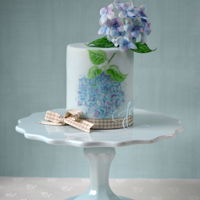 Something Blue Sugar & hand painted hydrangeas decorated this cake, trimmed with gingham ribbon.