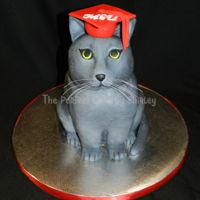 Graduation Cat Graduation cake for cat lover. Cat modelled off actual pet. all cake. Fondant hat.