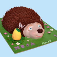 Hedgehog Hedgehog cake