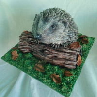 Hedgehog Cake, Animal Right Collaboration Hedgehog Cake.For the Animal rights collaboration. I chose the cute hedgehog, as their habitat is in decline.Hope you like it.www.facebook....