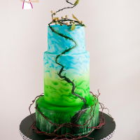 Jack And The Beanstalk Cake Inspired Stylized Fairy Tale Collaboration Inspired by the fairy tale this Jack and the Beanstalk cake was made for the Stylize Fairy Tale Collaboration with cake artist all around...