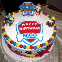 Nico's Cake For Icing Smiles This was my first Icing Smiles cake. 2 layer choc cake, Hershey's choc buttercream, Satin Ice and edible images. No plastic parts. I...