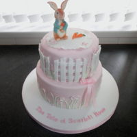 Peter Rabbit Christening Cake Peter Rabbit Christening cake for a little girl xsx