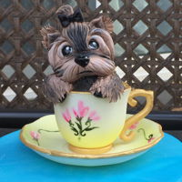 Tea Cup Yorkie Cute puppy in a Cup