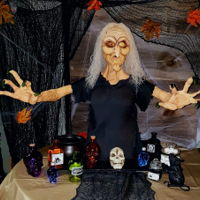 Witch Bust Cake I'm so late in posting this but wanted to share with all my fellow cakers :) this cake was heavy. It was a fundraising project that I...