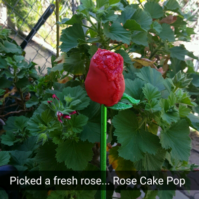 Rose Cake Pop In preparation to watch the New Beauty and the Beast, I made rose cake pops. I made a small batch so I don't have all of them but I...