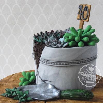 Succulentcake I couldn't decide what to get my neighbor... a plant or a cake... so I made a plant-cake ;)
