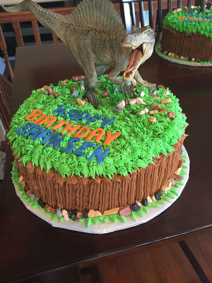 Dinosaur Birthday Cakes - CakeCentral.com